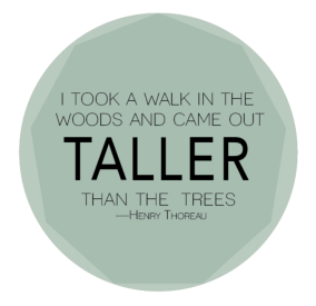 Image result for i took a walk in the woods and came out taller than the trees